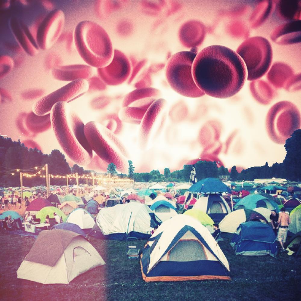 Camp3.png
