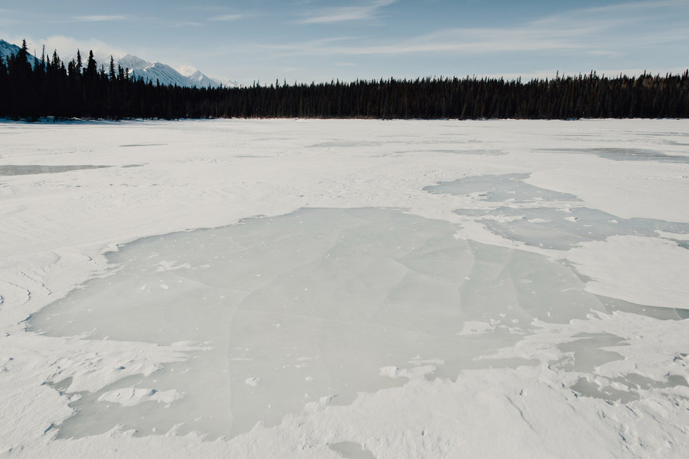 Yukon-Nugget -0123.JPG