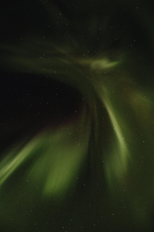 Yukon-Nugget-0015.JPG