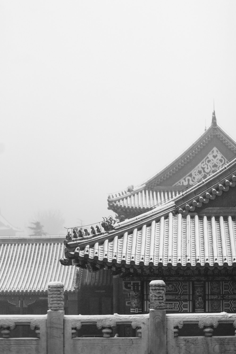 Forbidden City-1.jpg