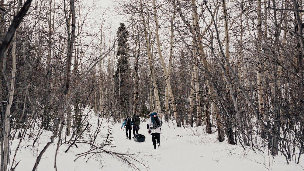 Yukon-Nugget-0005.JPG