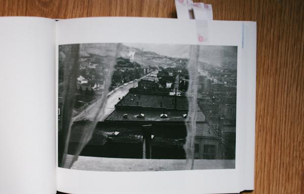 MG_9817.jpg