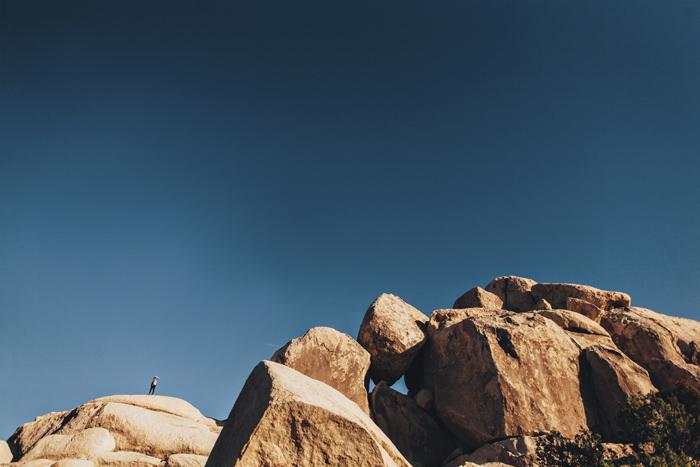Joshua-Tree-Cali-2014-114.jpg