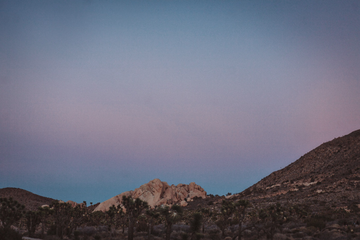 Joshua-Tree-Cali-2014-170.jpg