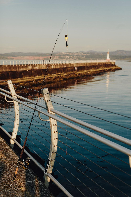 Harbour-0031.JPG