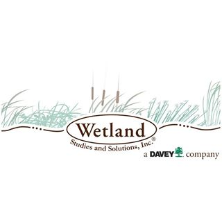 Wetlands .jpg