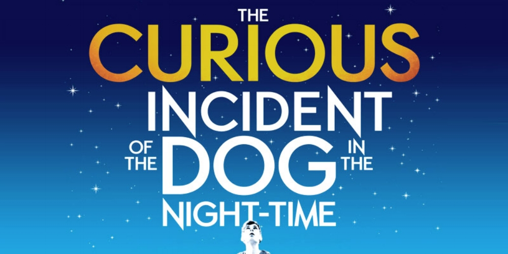 Curious Incident | Photo by  Show & Stay