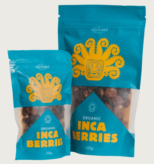 Inca_group (1).jpg