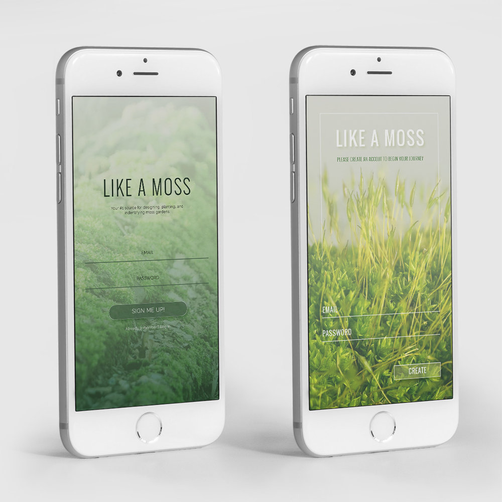 'Like a Moss' is a mock brand that created for this challenge.