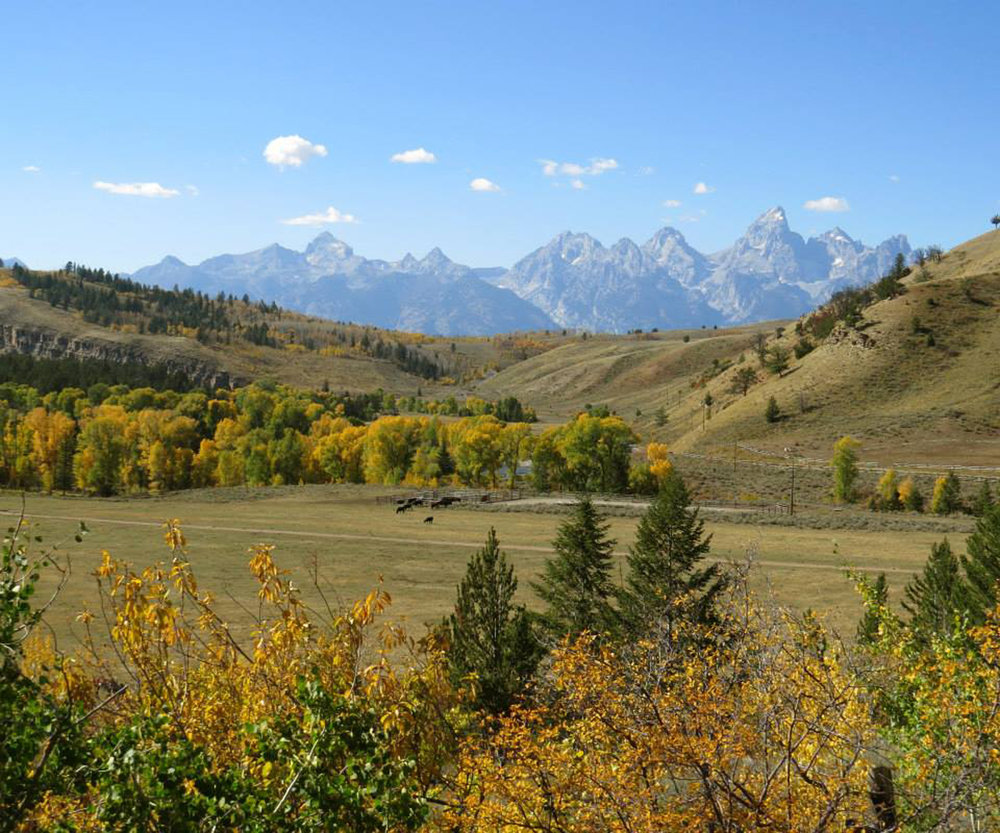 It was great to write about fall in Jackson Wyoming for Colorado Expression's August/September issue