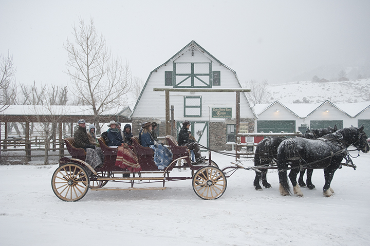 Guests at Chico Hot Springs get ready for a snowy ride in a carriage drawn by Percherons, one of the many things to do at this Montana resort in winter, w hich I wrote about for Mountain Living.