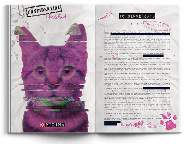 cat long copy mock up1.png