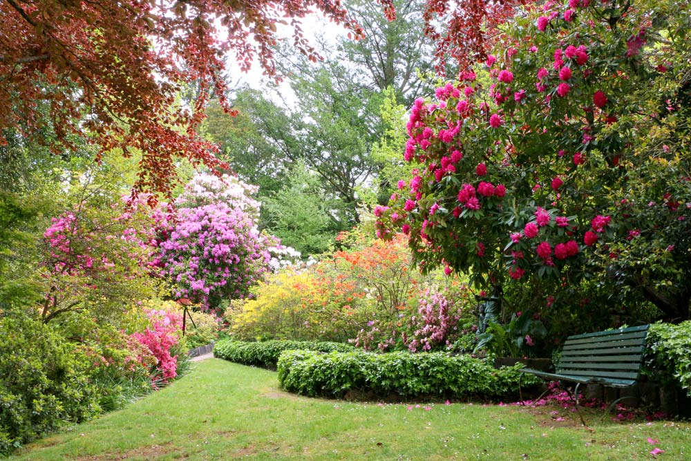 3309-seat-and-flower-garden-1000-40.jpg