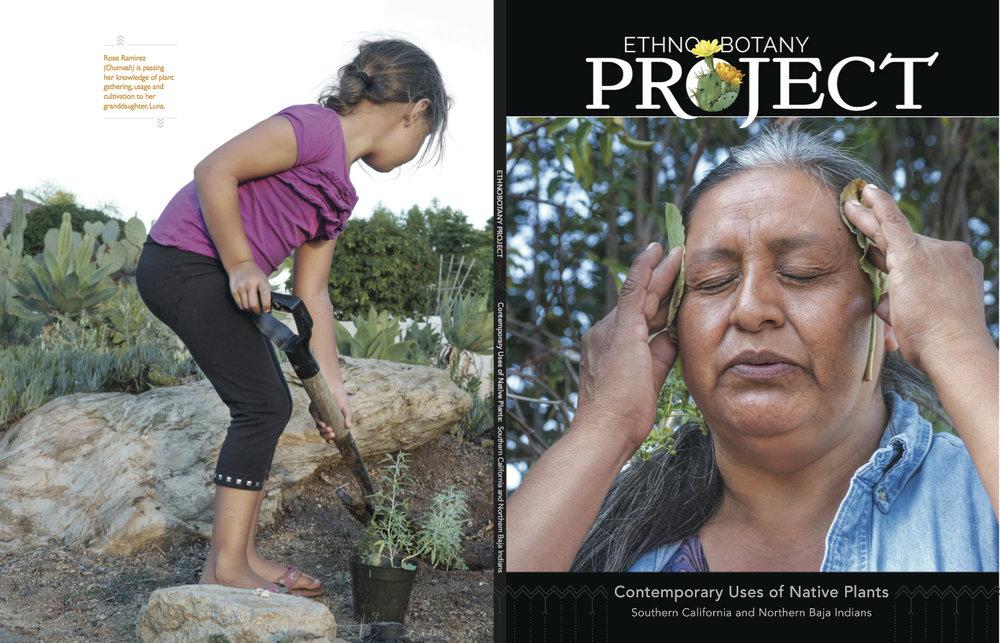 Yolanda Meza, Kuiai, of The Ethnobotany Project holding Yerba Mansa leaves.
