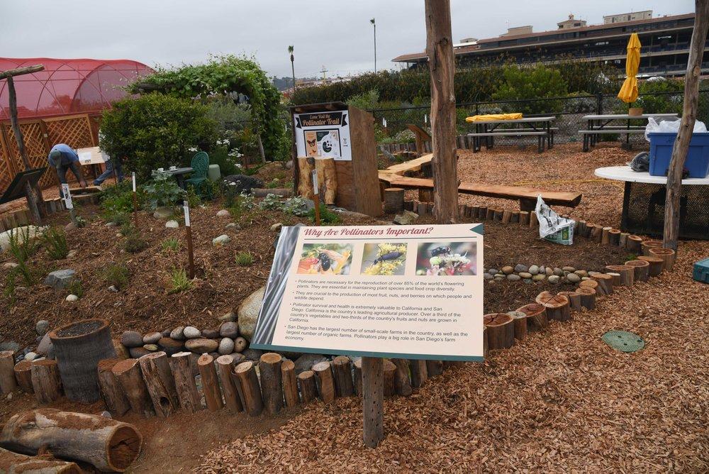 Pollinator Trail 5.jpg