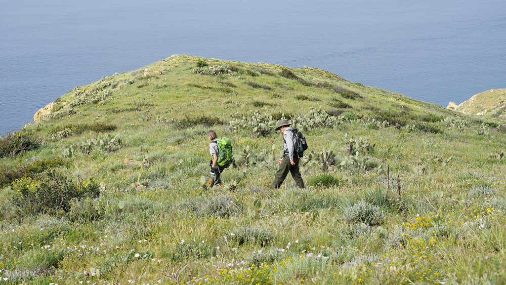 Researchers walk to a transect in Point Mugu State Park. Photo from National Park Service.