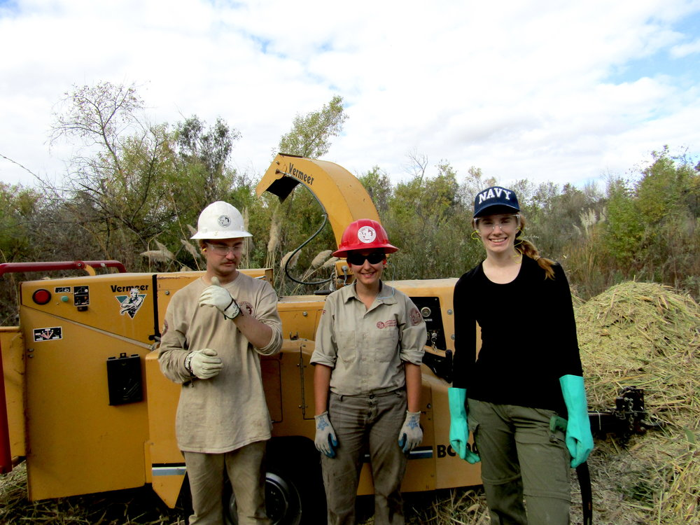 Mackenzie Taylor of our Committee (on right), with two ACE crew members, crew leader Niki (center) and crew member Mike (left), posing in front of the heavy-duty chipper ACE brought with them to chip Arundo.  You can see some of the resulting chips in the background.