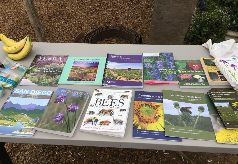 Pollinator Exhibit by USFWS 5.jpg