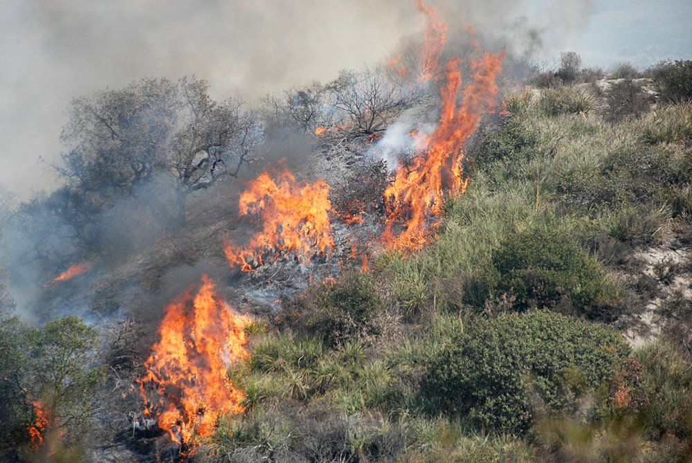 Richard Smith  from Orange County, USA,  Fires cross a hill in SoCal October 2007 ,  CC BY 2.0