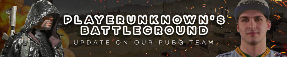 newsletter_banner_graphics_pubg.png