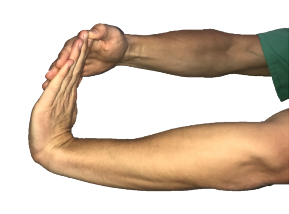 With your elbow straight and palm facing the floor, use your other hand to bend the wrist and fingers backward. Hold the stretch for 30 seconds.