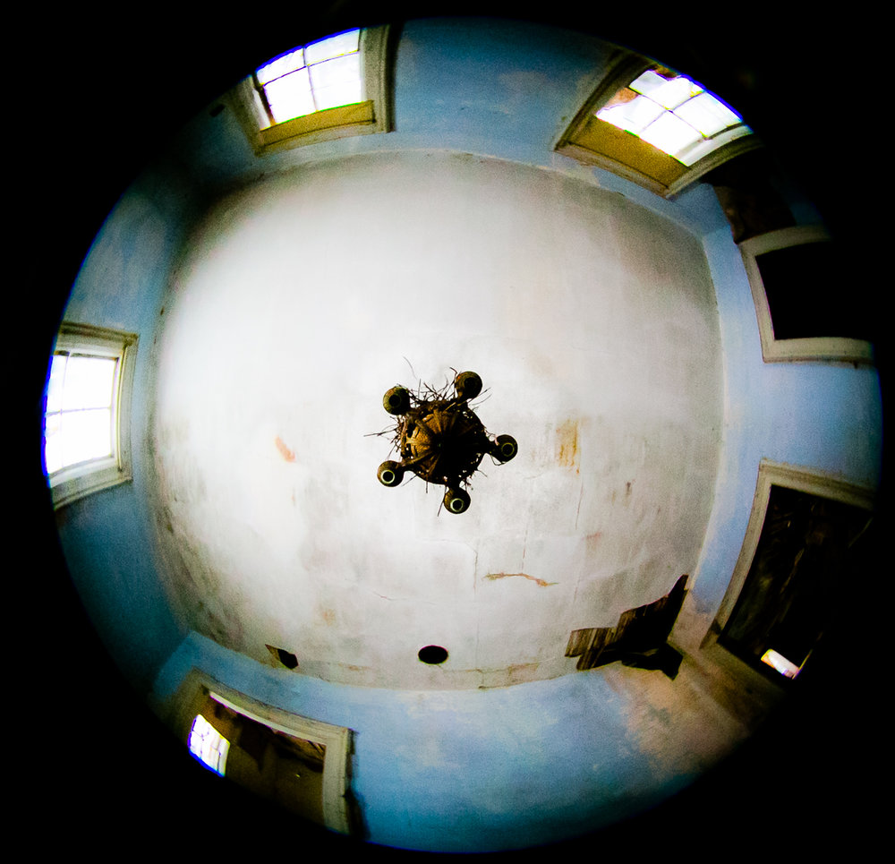 Fisheye of Nest.jpg