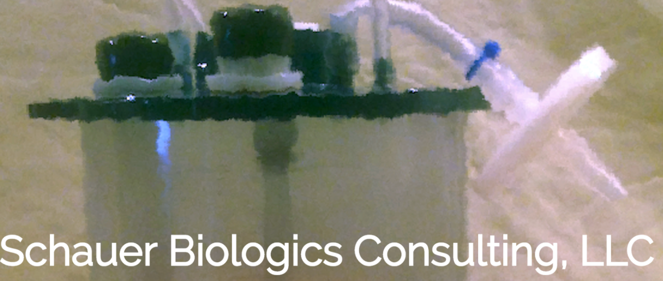 Schauer Biologics Consulting