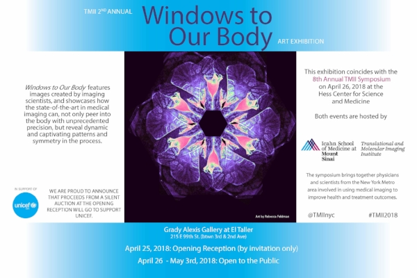 windows of our body.jpg
