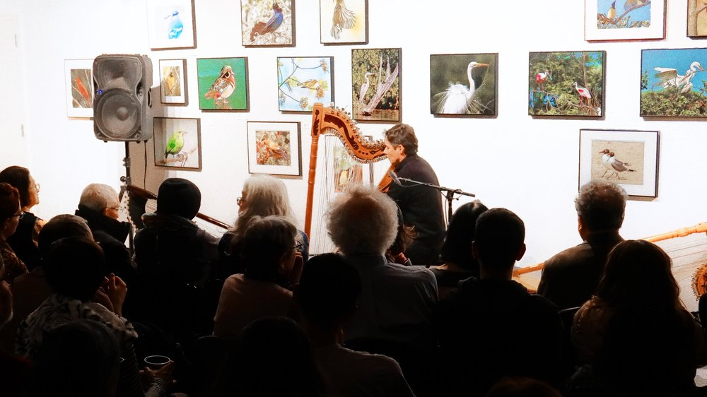 Harpist  with Birds Background HD.jpg