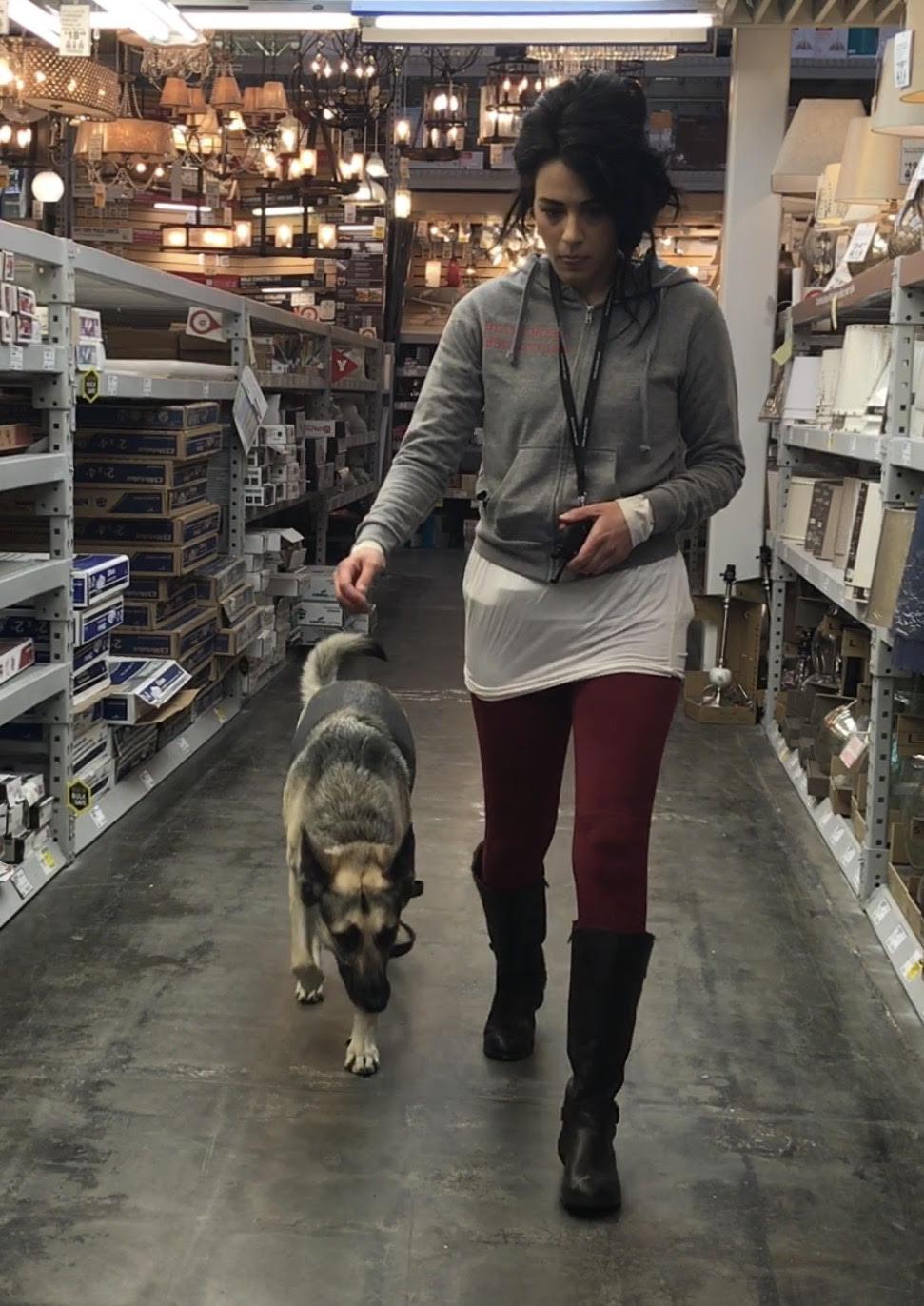 lowe's dog training good girl orem
