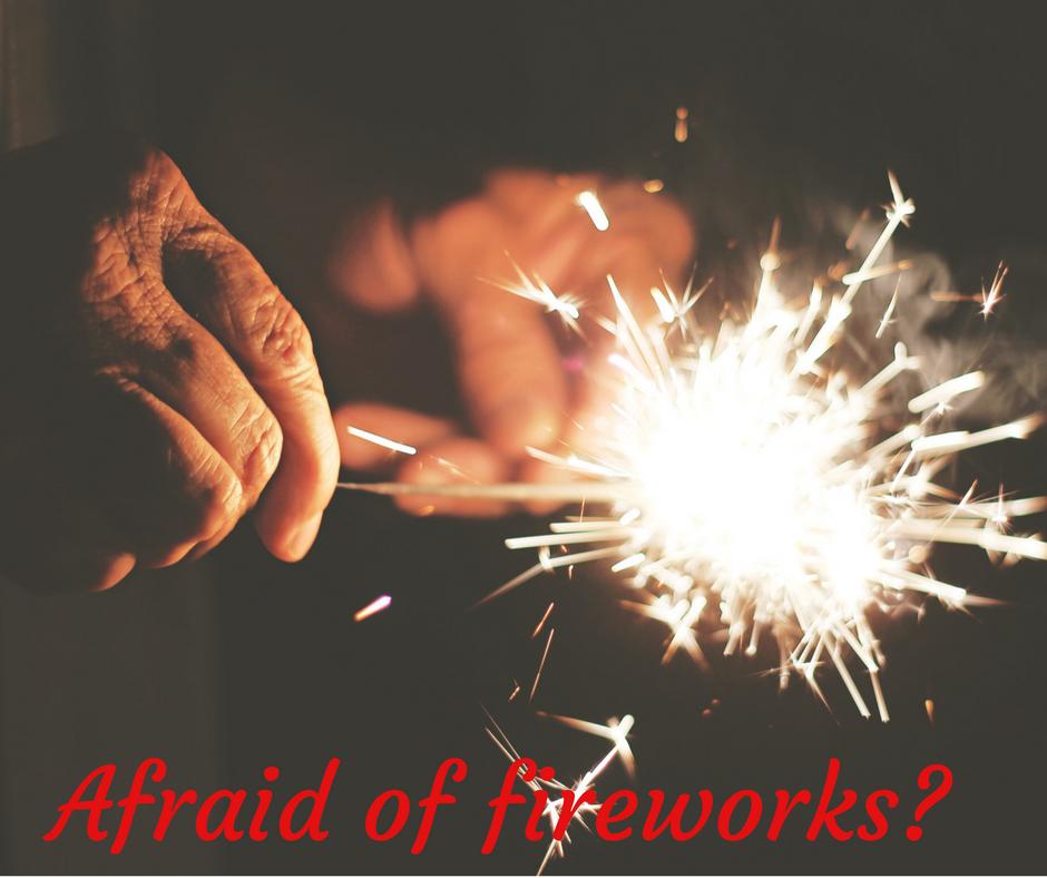 dog obedience training orem utah county fireworks fear