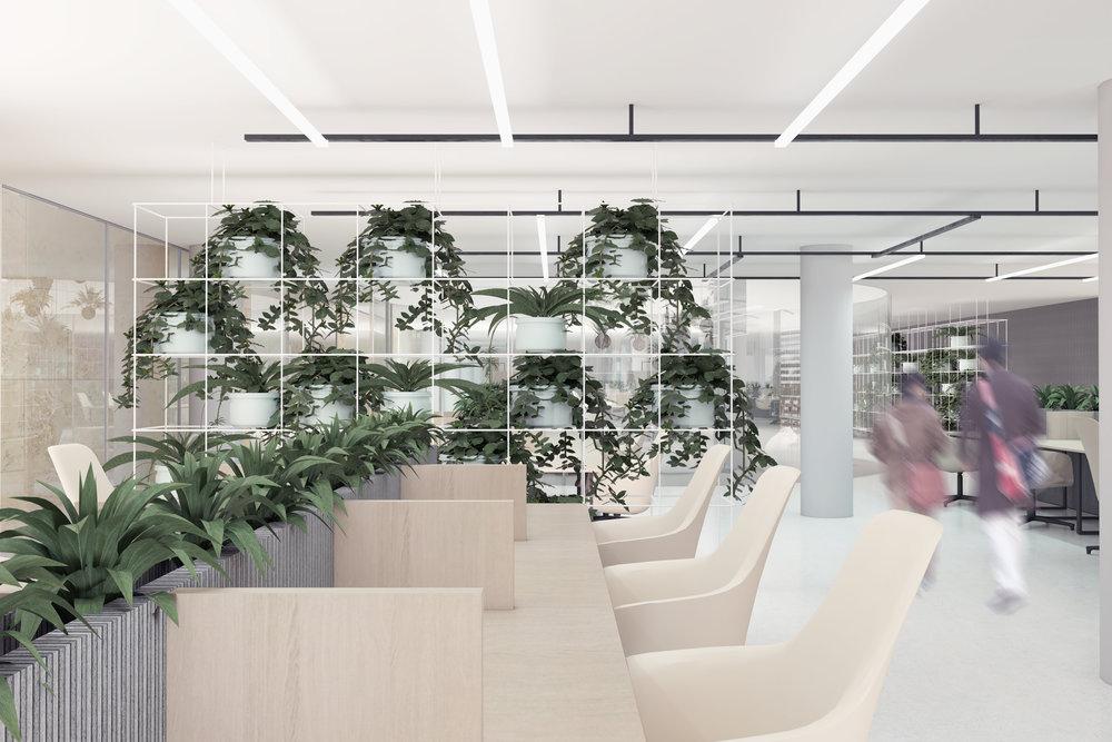 25_officeplants.jpg