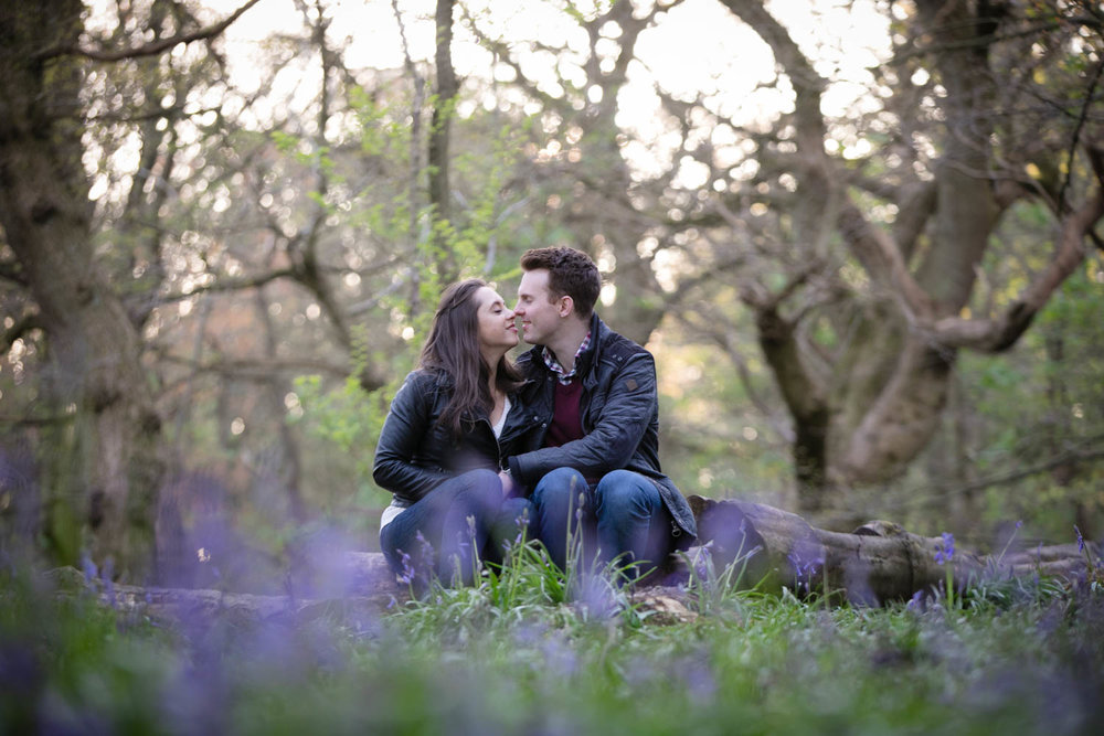 ilkley-moor-cow-and-calf-bluebells-pre-wedding-shoot