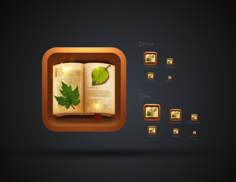herbarium-1.jpg