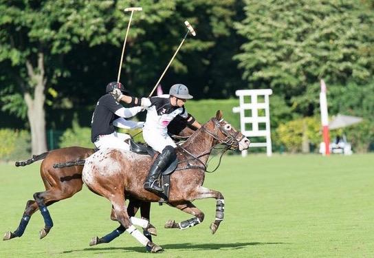 Clément Gosset > Polo Club du Domaine de Chantilly