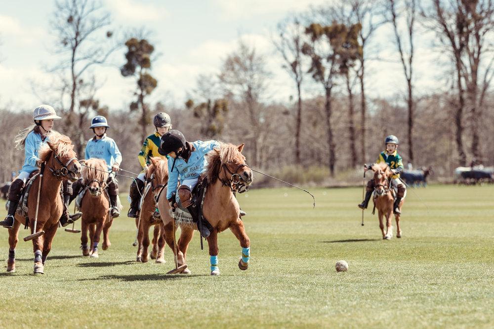 Match de Poney Polo