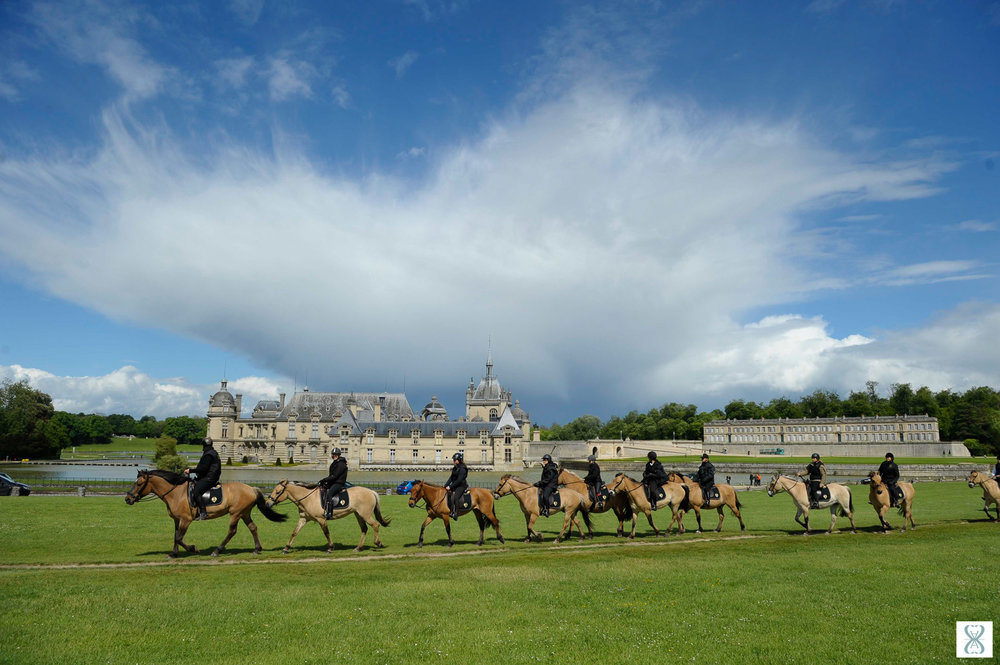 ballade-chevaux-cheval-henson-chantilly-chateau-parc-patrimoine-oise-picardie