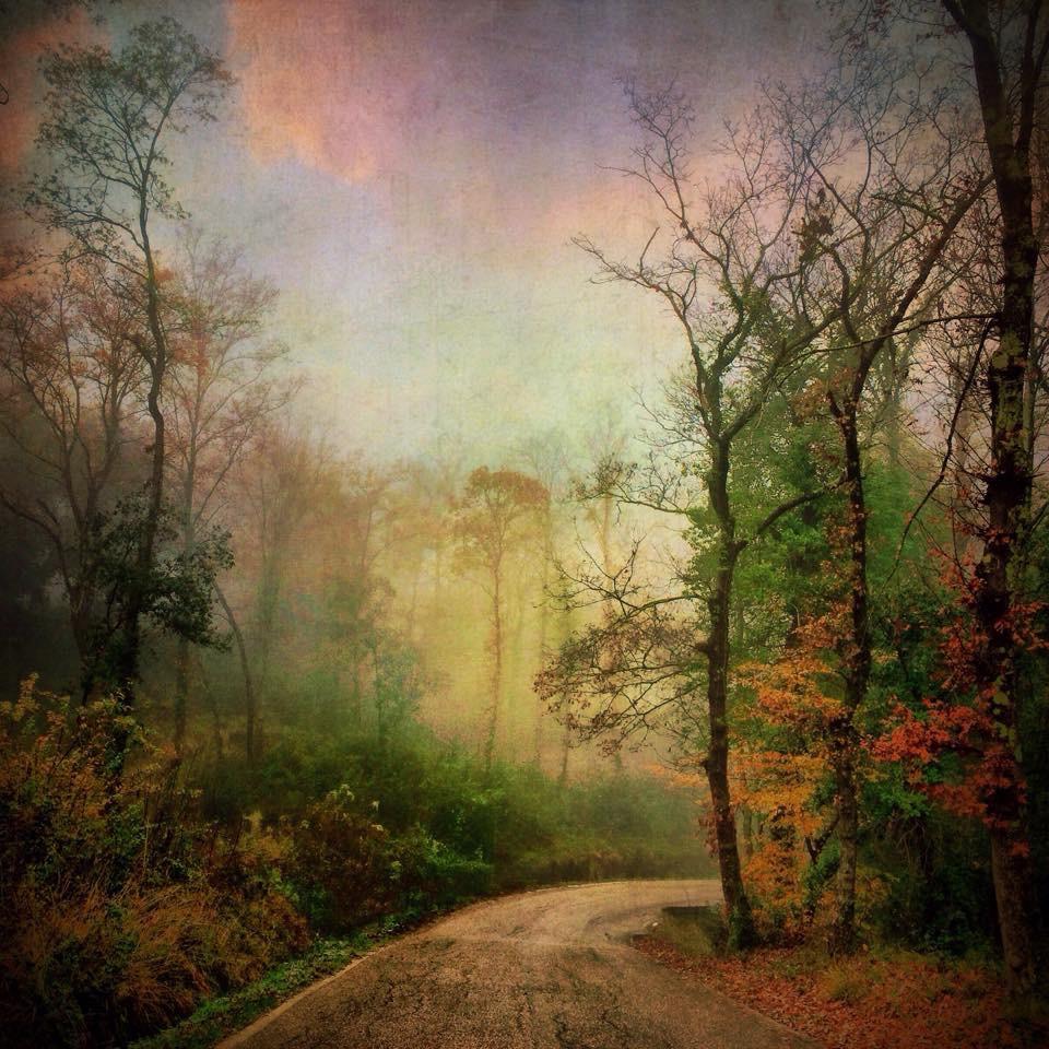 Landscape 767 White road in autumn