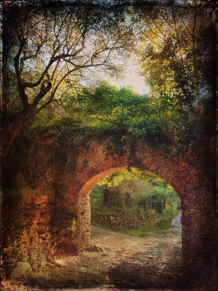 Landscape 1216 The arc