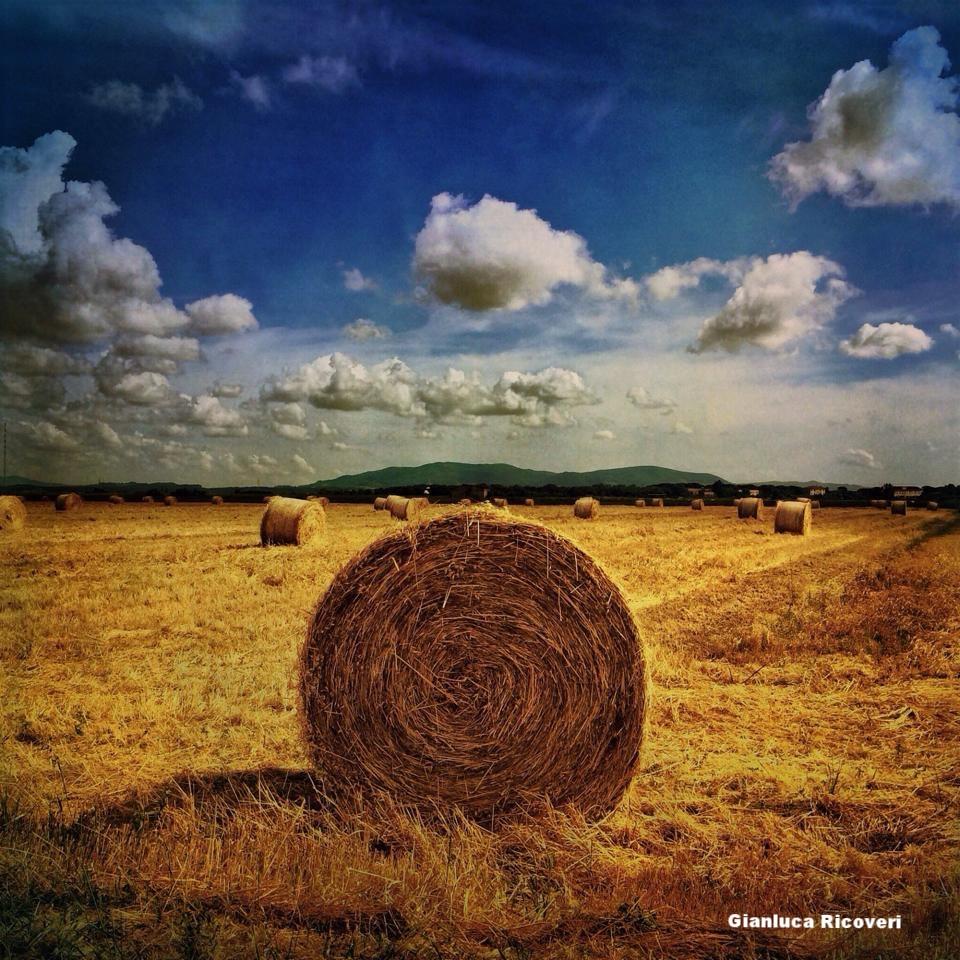 Landscape 625 Round bales