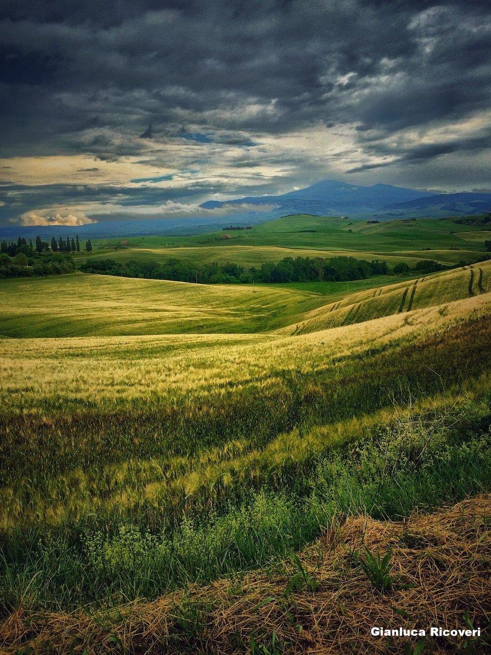 Landscape 886 Val d'Orcia Hills