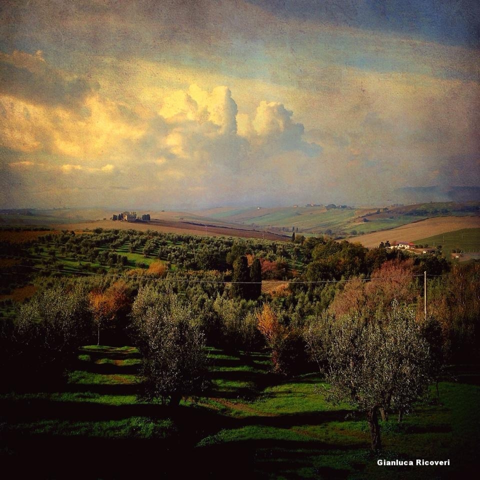 Landscape 580 Tuscany's Hills in autumn
