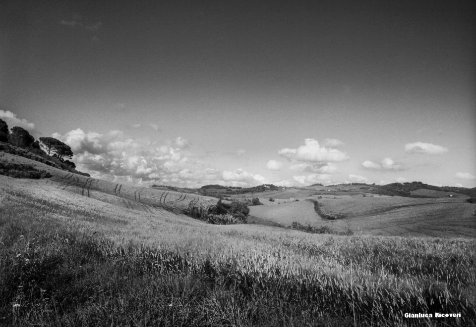 Tuscany's Hills  analogical view # 1