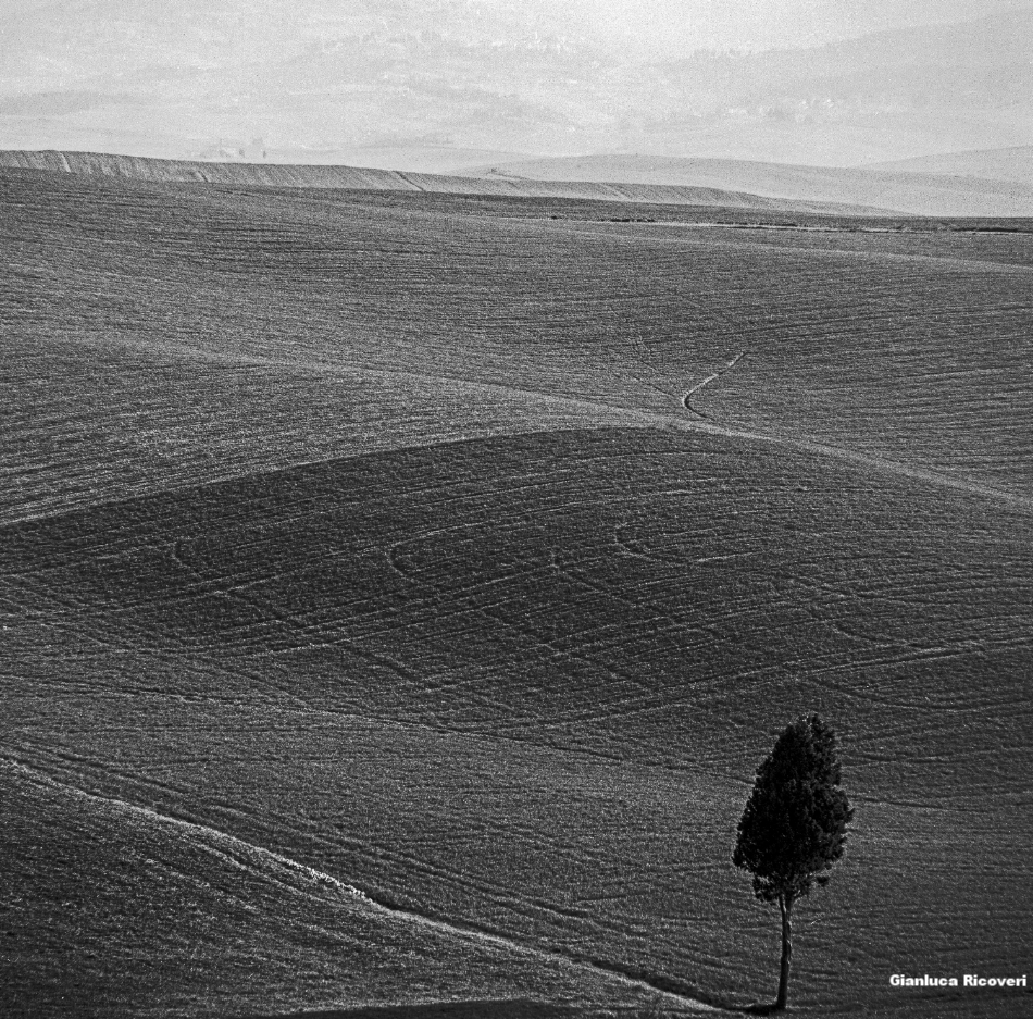 Tuscany's Hills  analogical view # 13