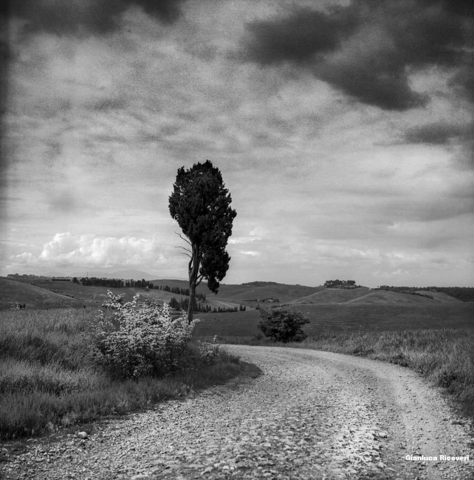 Tuscany's Hills  analogical view # 11