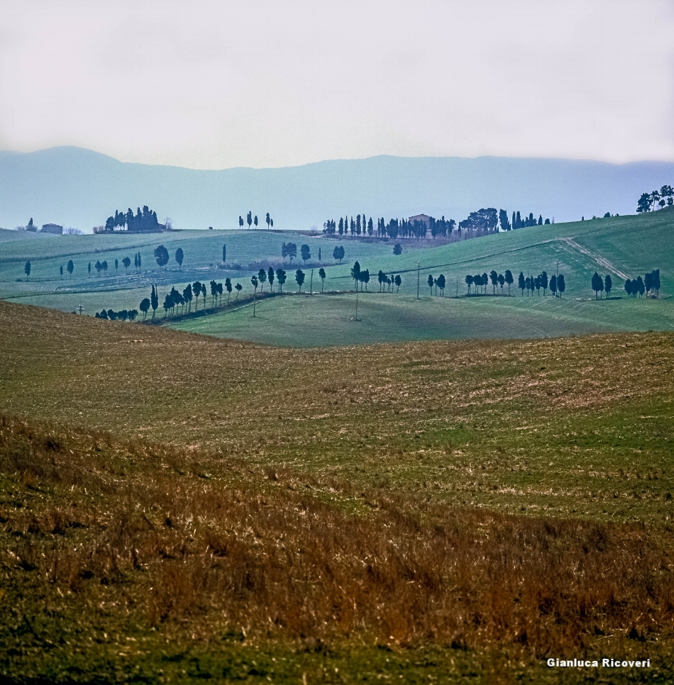 Tuscany's hills in Colours # 8