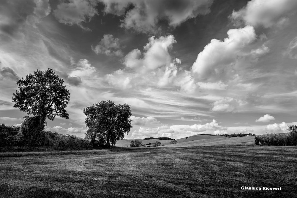 Tuscany's hills in B&W # 01