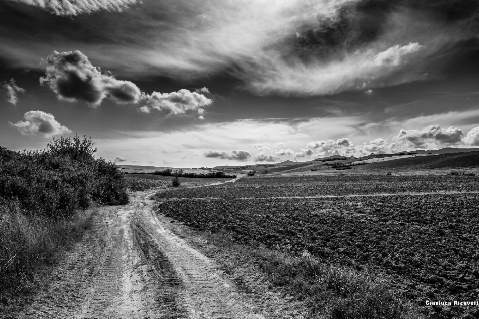 Tuscany's hills in B&W # 03