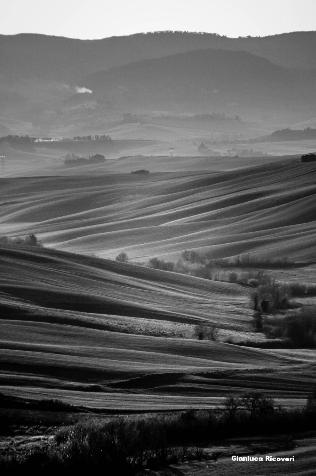 Tuscany's hills in B&W # 10