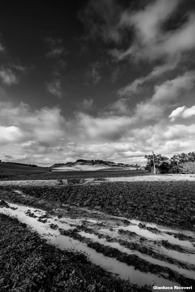 Tuscany's hills in B&W # 12